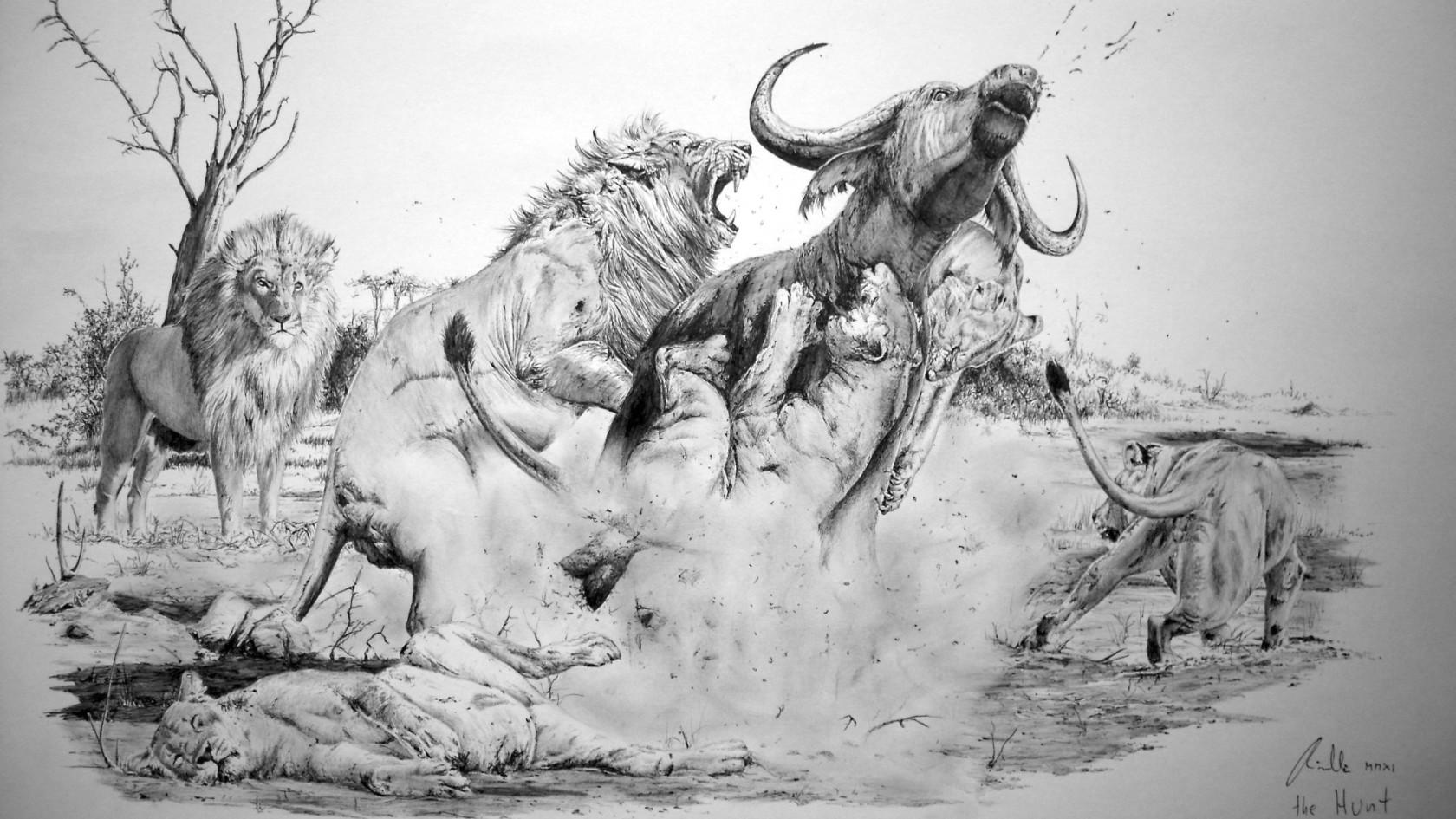 O Me Obrazy Ilustrace Knih Malba Na Zakazku Vladimir Rimbala